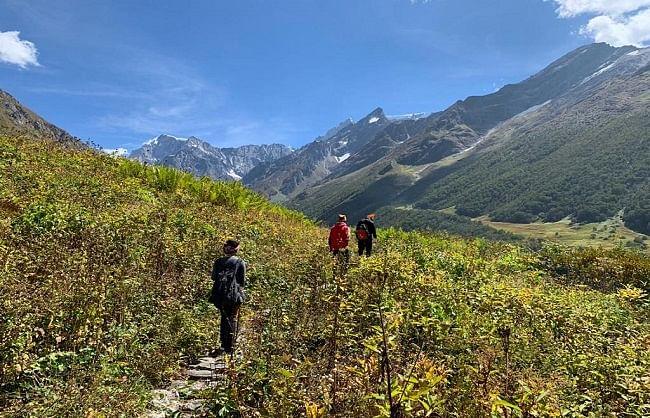 उत्तराखंड: विश्व धरोहर फूलों की घाटी गुलजार, 55 दिन में 530 पर्यटक पहुंचे
