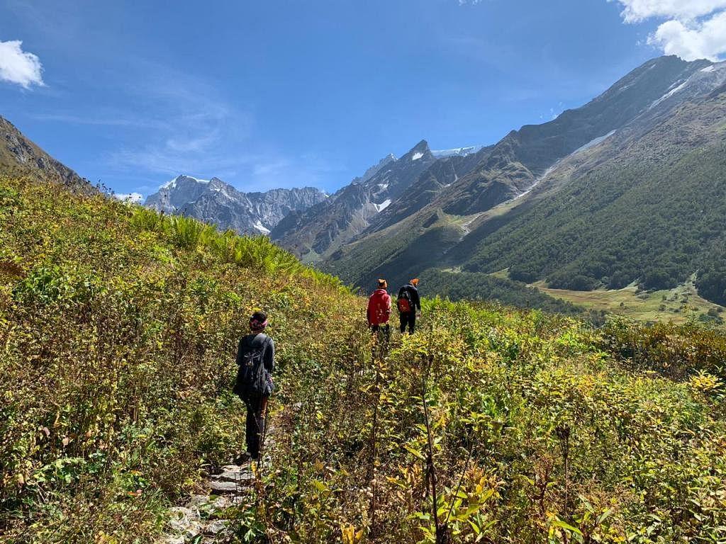 विश्व धरोहर फूलों की घाटी गुलजार, 55 दिन में 530 पर्यटक पहुंचे