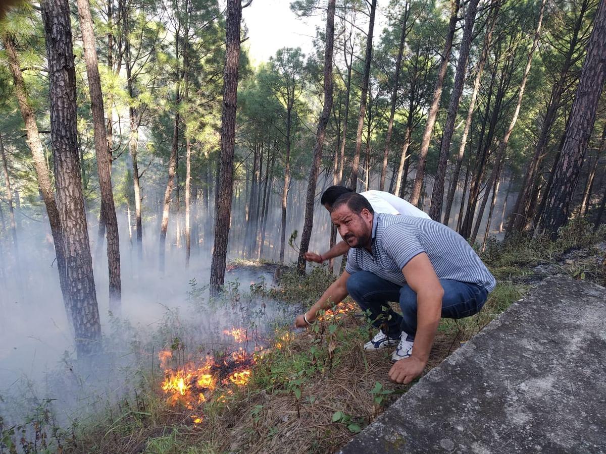 वन पंचायत तोलब एवं कर्णधार में शरारती तत्वों ने लगाई आग, स्थानीय लोगों ने बुझाई