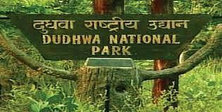 योगी सरकार 15 दिन पहले ही एक नवंबर से पर्यटकों के लिए खोलेगी दुधवा नेशनल पार्क