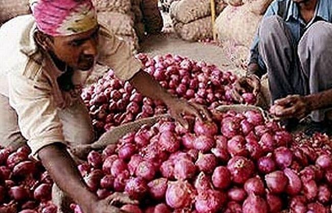 सरकारी गोदामों में सड़ गया आधा प्याज, थोक भाव 65 रुपये किलो