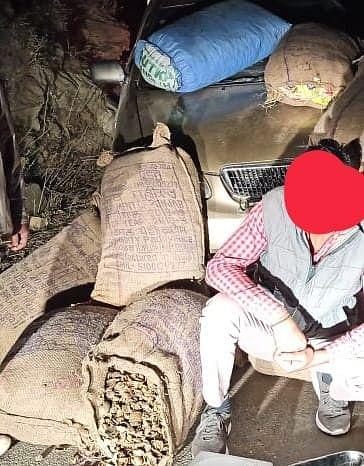 बंजार में पंजाब के व्यक्ति से 90 किलोग्राम भुक्की बरामद