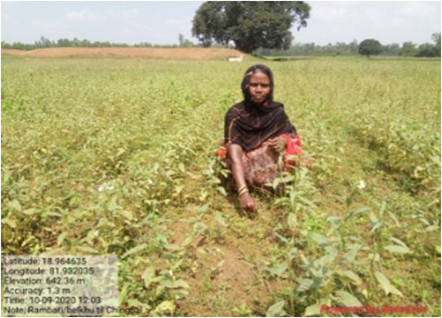 Steps of women moving towards improved agriculture in Bastar of Chhattisgarh