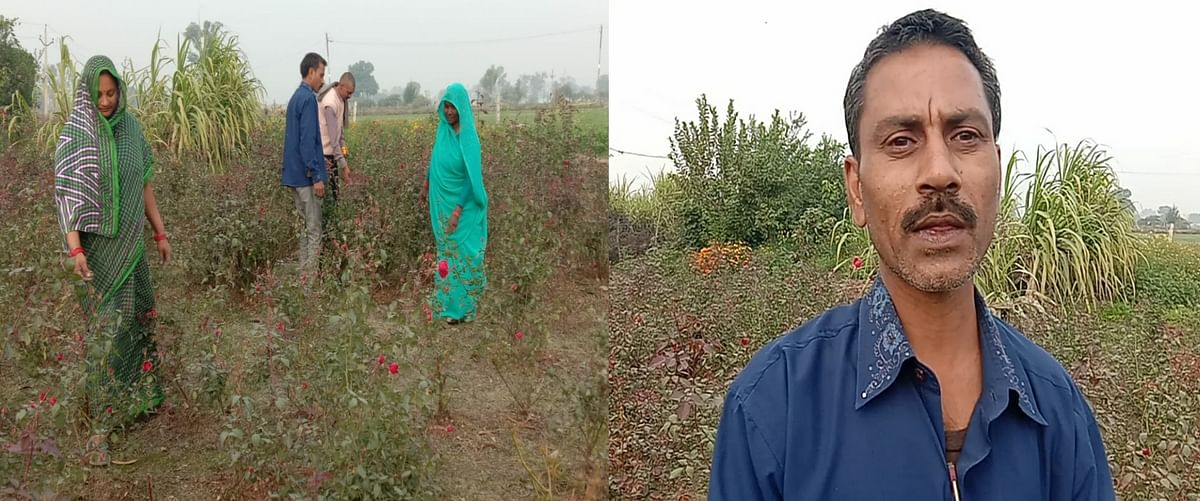कानपुर देहात : आत्मनिर्भर भारत की ओर बढ़े इस किसान के कदम, फूलों की खेती से कमा रहा हाजरों