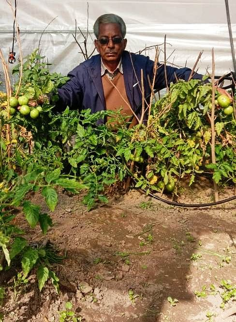Farming adopted after retiring, earning thousands of rupees