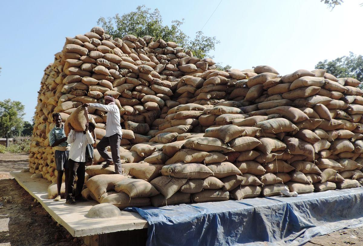 रायपुर : संग्रहण केंद्र में बने पक्के चबूतरे धान को बचा रहे नमी, बारिश और चूहों से