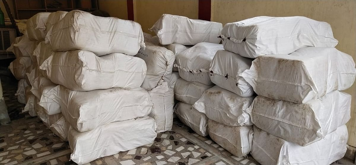 DRI again caught 17 quintals of cannabis, two smugglers arrested