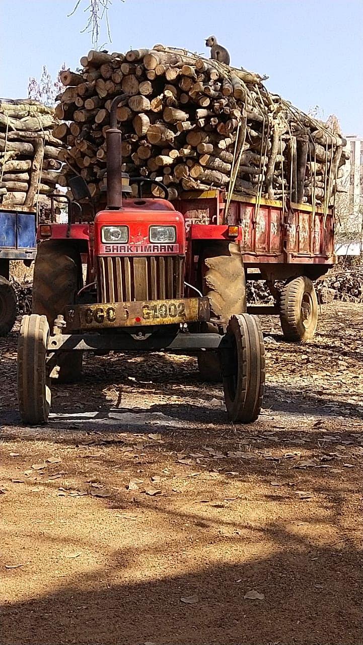 रायपुर : अवैध रूप से काष्ठ परिवहन कर रहे दो ट्रैक्टर लकड़ी सहित जब्त