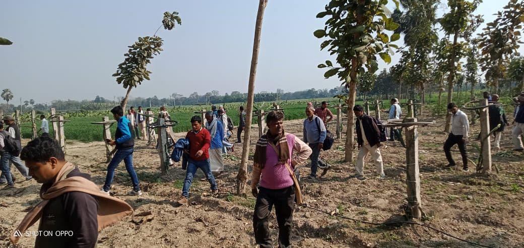बिहार के किसानों के लिए प्रेरणा का स्रोत बना बेगूसराय में उपजाया जा रहा ड्रैगन फ्रूट