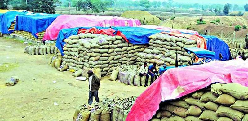जगदलपुर : मौसम के बदलाव से खरीदी केंद्रों में धान के खराब होने की संभावना बढ़ी