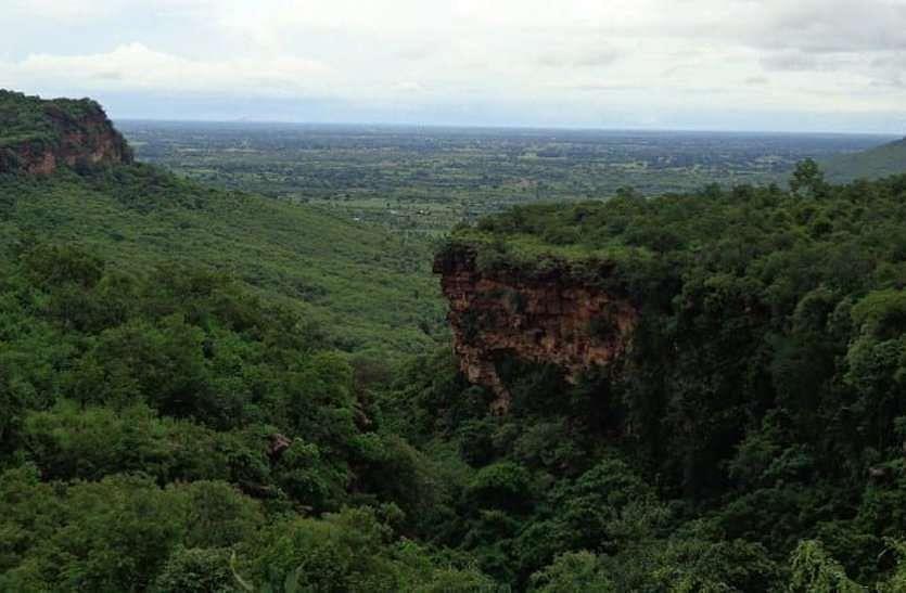 मध्य प्रदेश की चिंता शुद्ध हवा नहीं तो कैसे बचेगा जीवन, इसलिए बढ़ा लिया अपना वन क्षेत्र