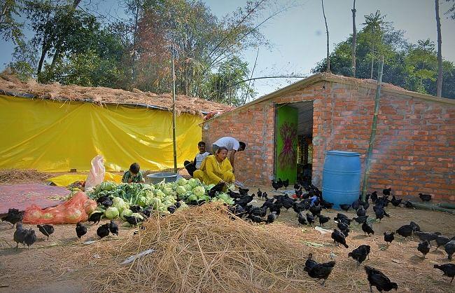 आत्मनिर्भर: किन्नर मोहिनी ने शुरू किया मुर्गी पालन