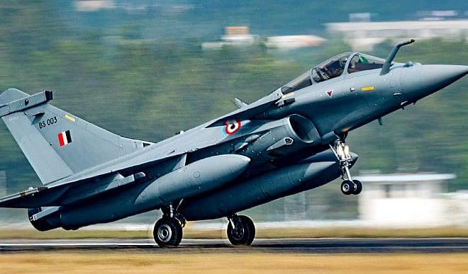 भारतीय वायु सेना में पहली बार शामिल किए गए देसी कुत्ते, जानिए इस नस्ल के बारे में