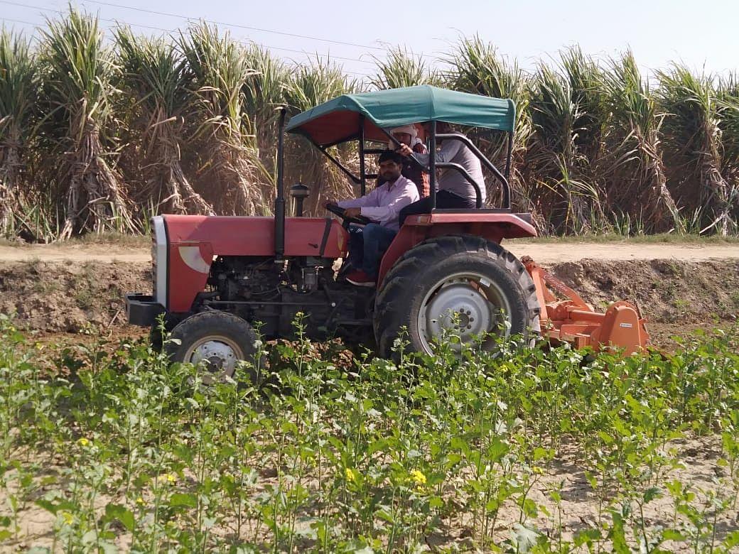 कृषि कानूनों के विरोध में किसान ने जोत दी फसल