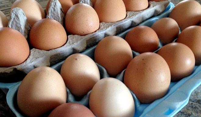 अंडों-के-निर्यात-के-लिए-गुणत्ता-प्रमाण-पत्र-अनिवार्य-करने-का-प्रस्ताव