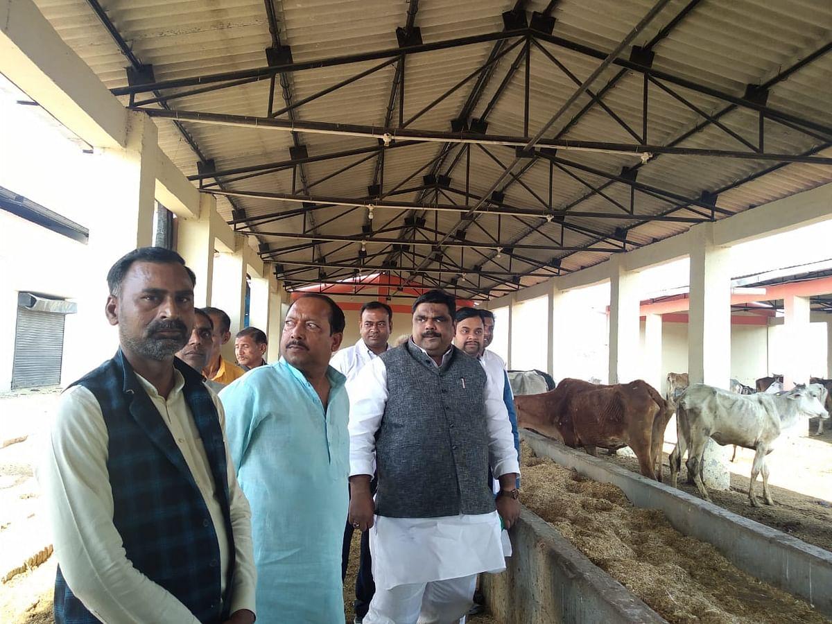 फतेहपुर : राज्यमंत्री ने गौशाला में गंदगी देखकर भड़के, हरा चारा न मिलने पर लगाई फटकार