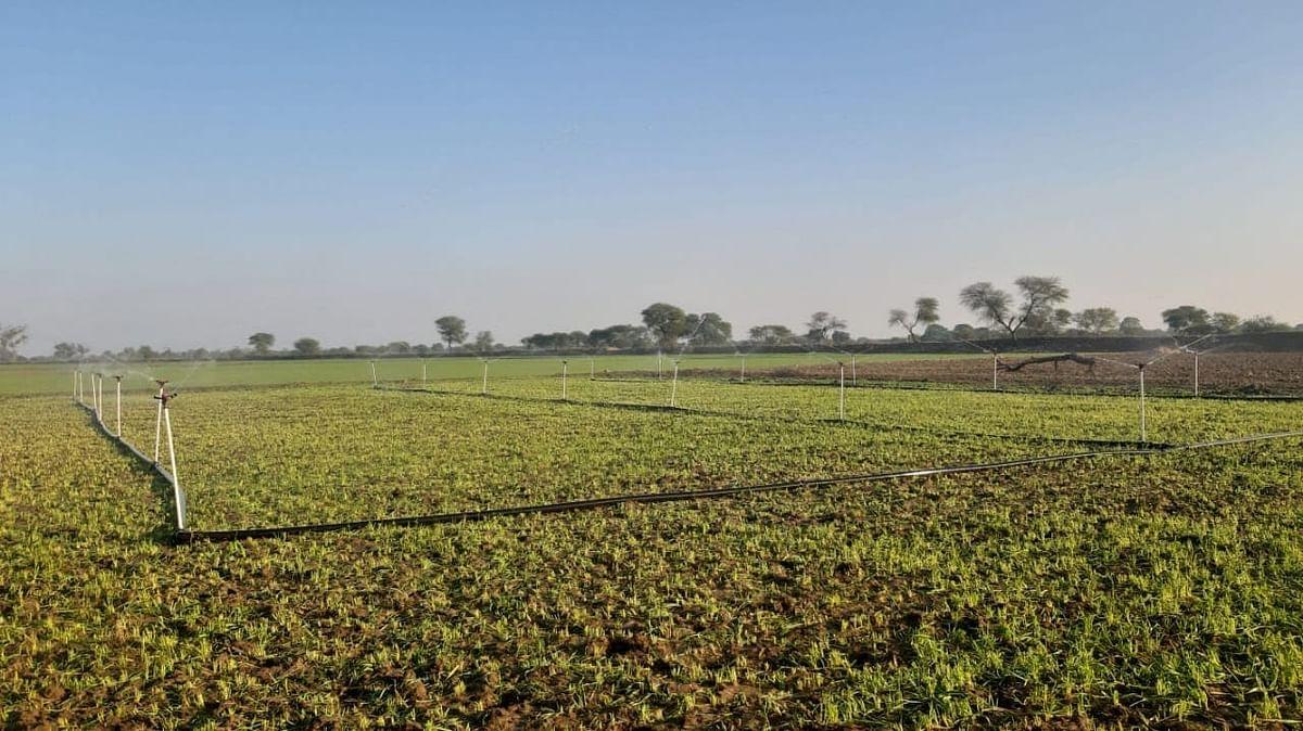हमीरपुरः 18,24 करोड़ की स्प्रिकंलर सिंचाई परियोजना से खेतों में लहलहायेगी फसलें