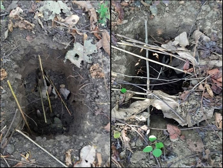 sukma-naxalites-found-39-spike-holes-in-palamadgu