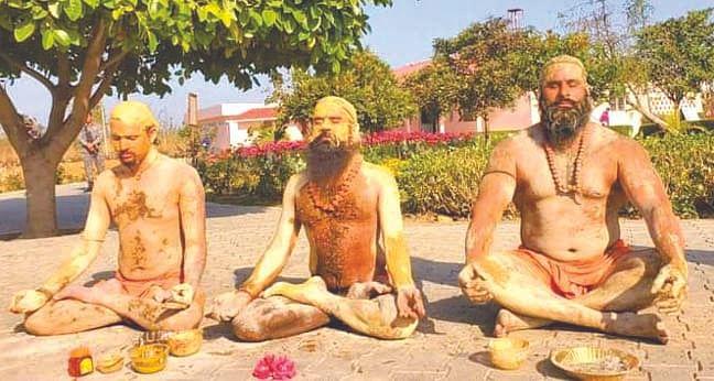 बाबा रामदेव ने डब्ल्यूडब्ल्यूई रेसलर के साथ किया योग