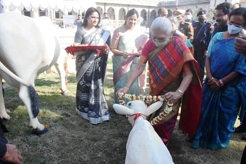 राज्यपाल ने इविवि के ऐतिहासिक विजयनगरम हॉल और सेवन स्टोरी बिल्डिंग का किया उद्घाटन