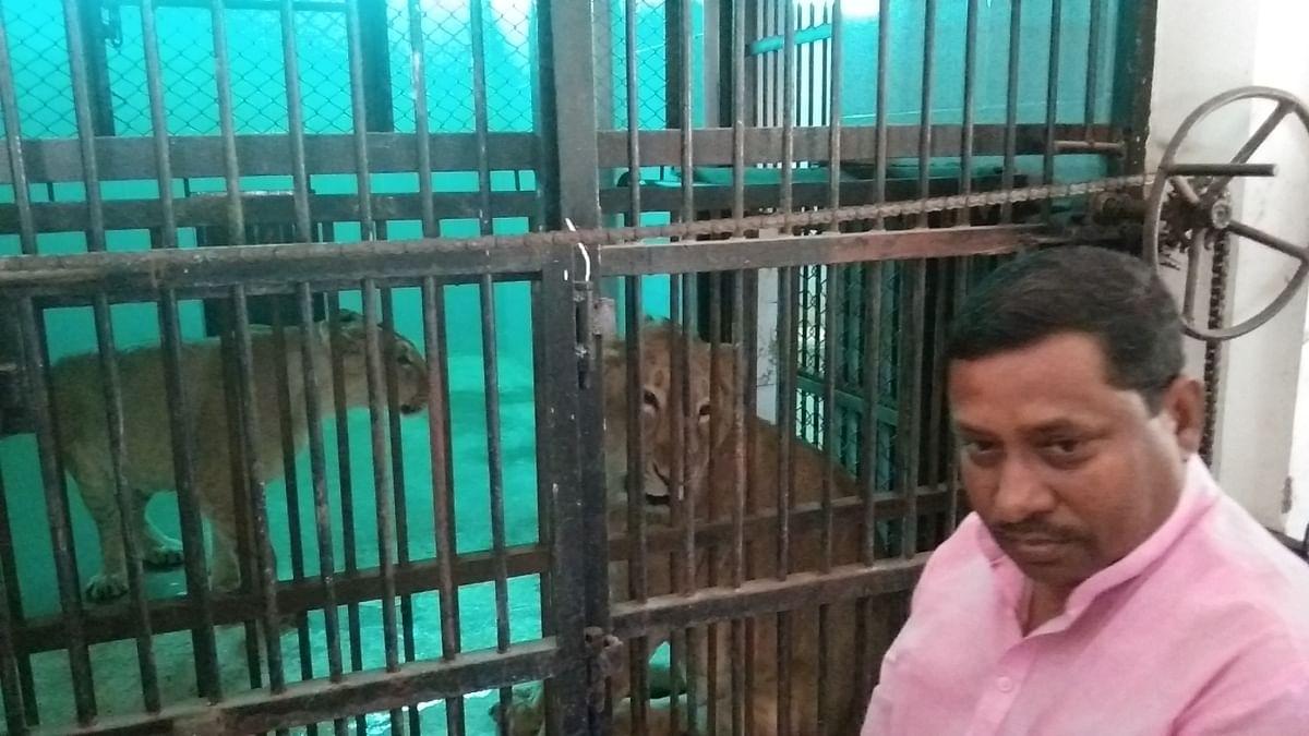 पर्यटकों को जल्द ही शेरों का लुत्फ करवाएंगे भाजपा सांसद रामशंकर कठेरिया