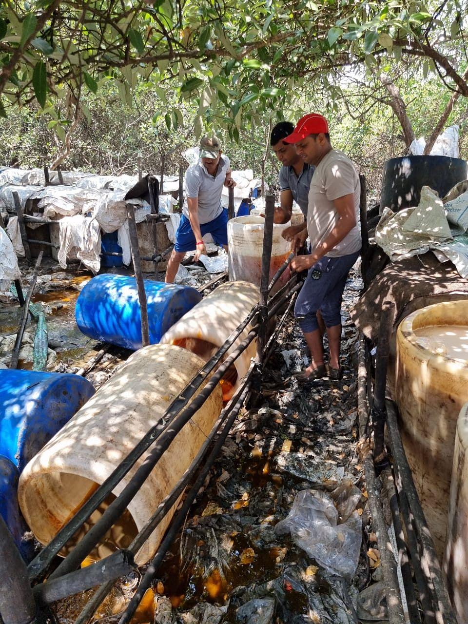 नायगांव खाड़ी किनारे अवैध शराब पर कार्रवाई