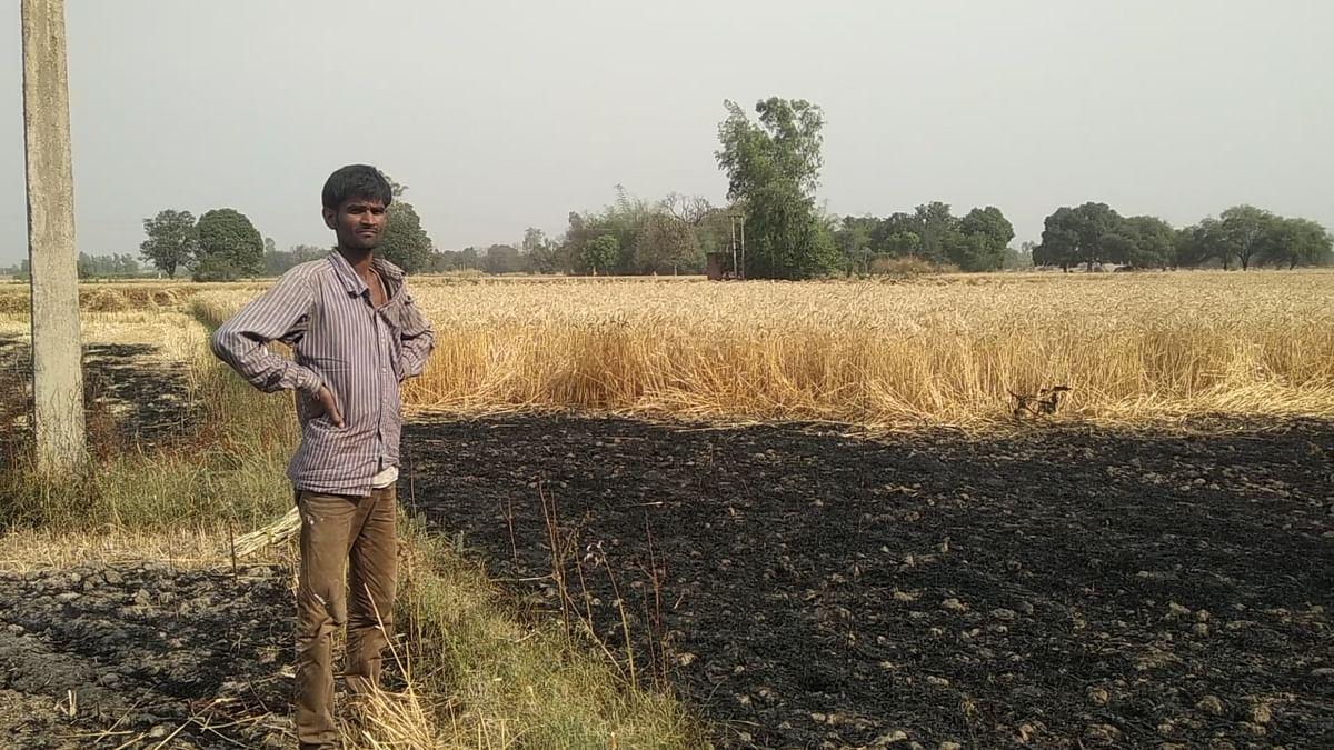शॉर्ट सर्किट से लगी आग, 32 बीघा गेहूं की फसल जलकर खाक