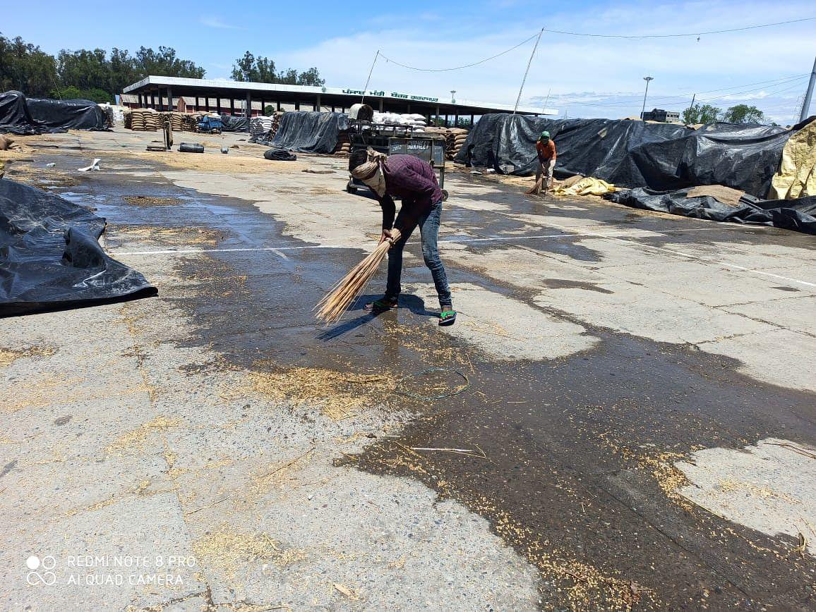 बारिश के बाद मंडियों में फसलों की खरीद के लिए आवश्यक व्यवस्था - मंडियों से बारिश के पानी की सफाई और निकासी