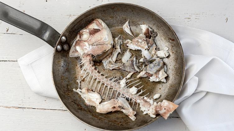 मछली का कचरा फेंकने के बजाए, प्लास्टिक और कपड़ा बनाने के लिए करें इस्तेमाल