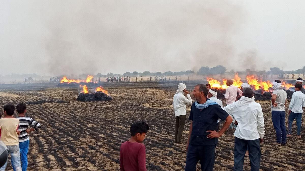 गेहूं के खेतों में लगी भीषण आग, 15 बीघा गेहूं की फसल खाक