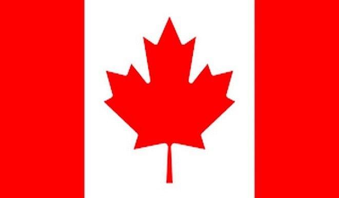 नग्न अवस्था में वीडियो कॉन्फ्रेंस में नजर आए कनाडा के एक सांसद, मांगी माफी