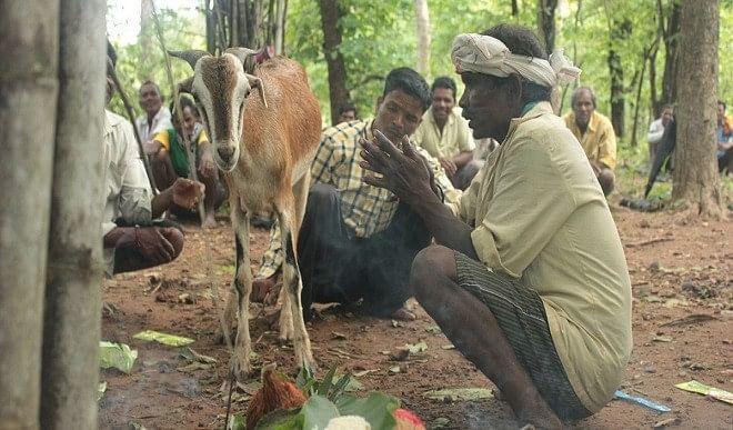 महाराष्ट्र-सरकार-ने-आदिवासियों-की-मदद-के-लिए-231-करोड़-रुपये-की-धनराशि-को-मंजूरी-दी