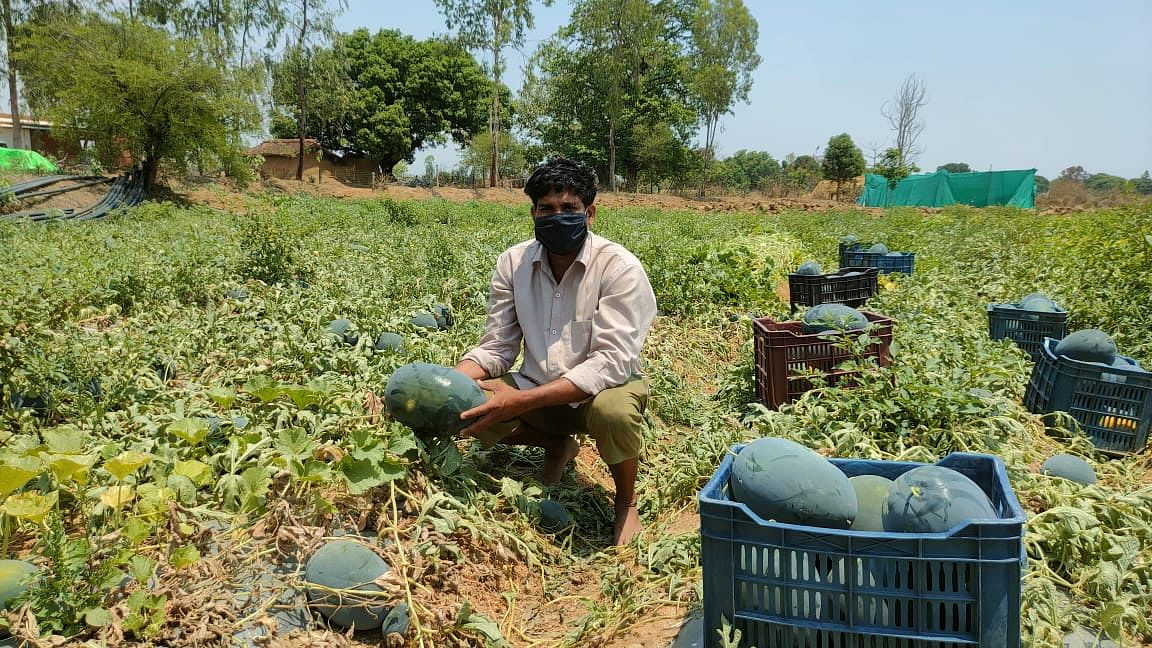 सरकारी अनुदान के संसाधन लॉकडाउन में किसानों के लिए बने वरदान