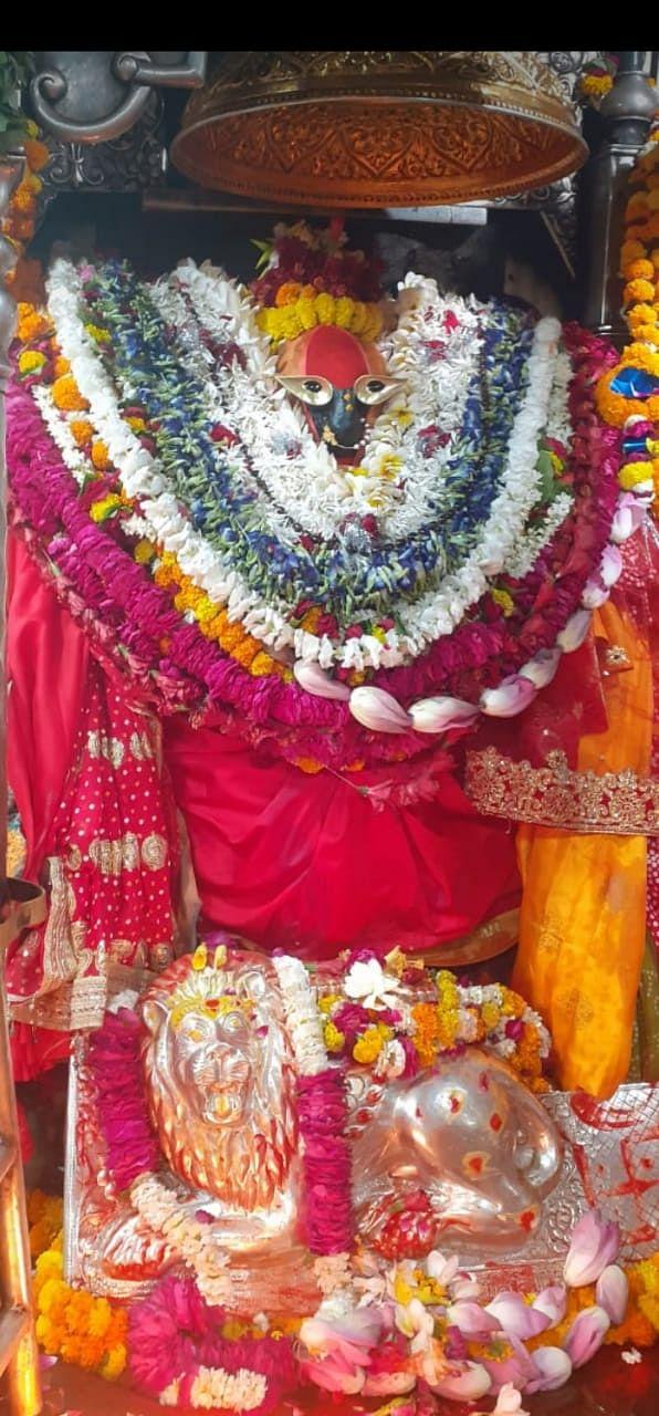 चैत्र नवरात्र : विंध्य दरबार में भक्तों ने दर्शन पूजन कर पुण्य की कामना की