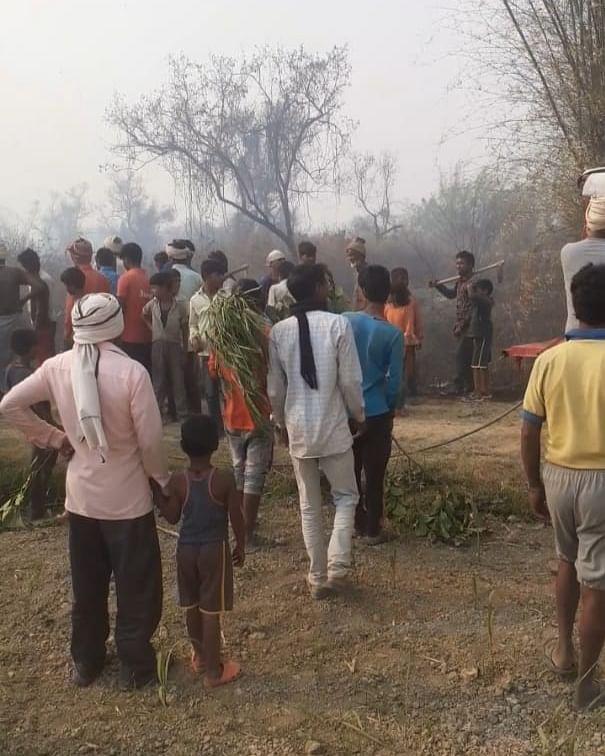 बलरामपुर : सुहेलवा जंगल में लगी आग, बुझाने में जुटे दमकल कर्मी