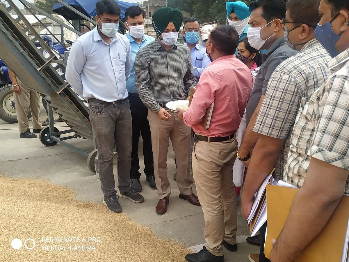 खरीदे गए गेहूं के लिए जिले के किसानों को 08 करोड़ 75 लाख का भुगतान - उपायुक्त