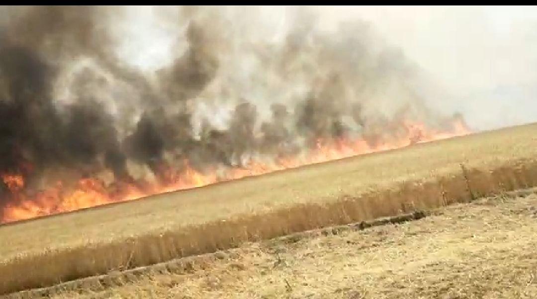 बलिया में आग का तांडव, सैकड़ों एकड़ गेहूं की फसल राख
