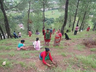 बक्सवाहा जंगल में बसे जीवन पर संकट