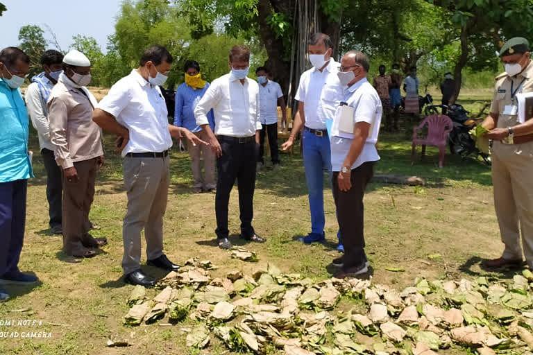 बीजापुर : कलेक्टर व मुख्य वन संरक्षक ने संग्रहित तेन्दूपत्ता के नुकसान का लिया जायजा