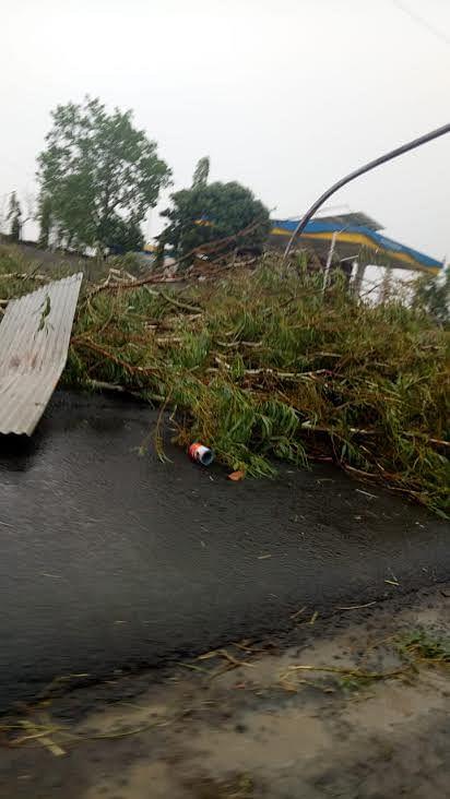 चक्रवात का असर मंदसौर जिले में,  तेज हवाओं के साथ हुई बारिश