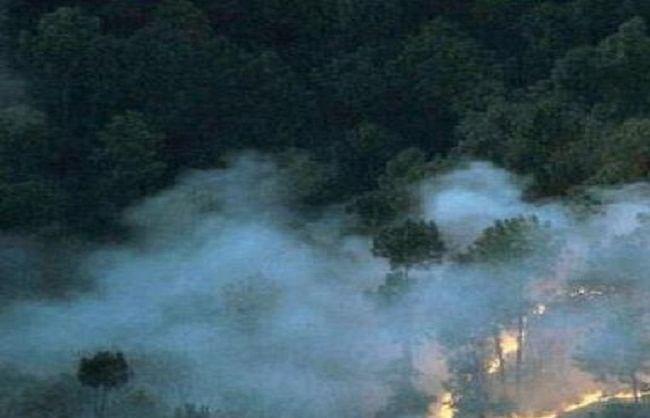 उत्तराखंड: 45 जगह वनाग्नि, 63.15 हेक्टेयर वन प्रभावित