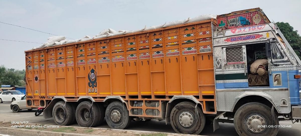 animal-smuggling-failed-29-cattle-freed-three-cases-registered