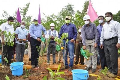 एनटीपीसी-रामागुंडम शहरी जंगलों को दिखा रहे नए रास्ता