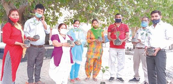 मां गंगा महिला शक्ति संगठन ने किया पौधरोपण