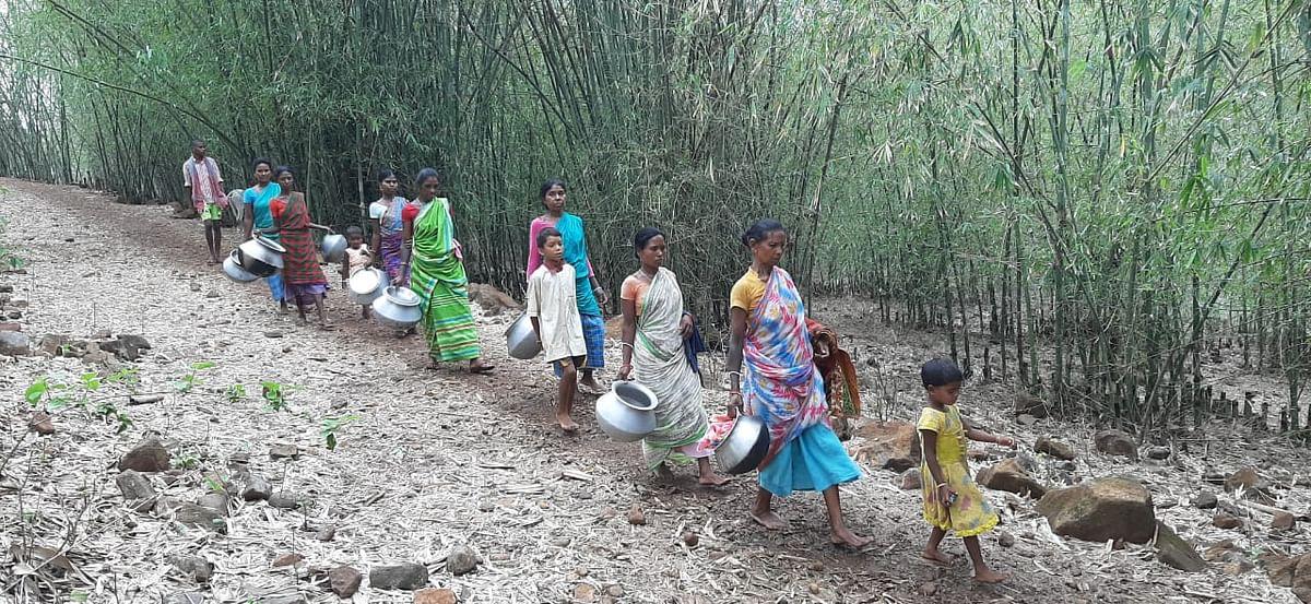 दशकों बाद भी पहाड़िया और संताल आदिवासी समुदाय मूलभूत सुविधाओं से वंचित