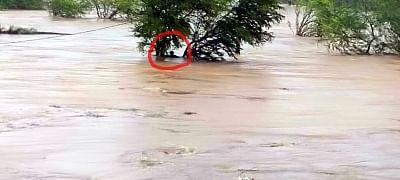 उप्र : नदियों के उफान को देखते हुए 16 जिलों में बाढ़ अलर्ट