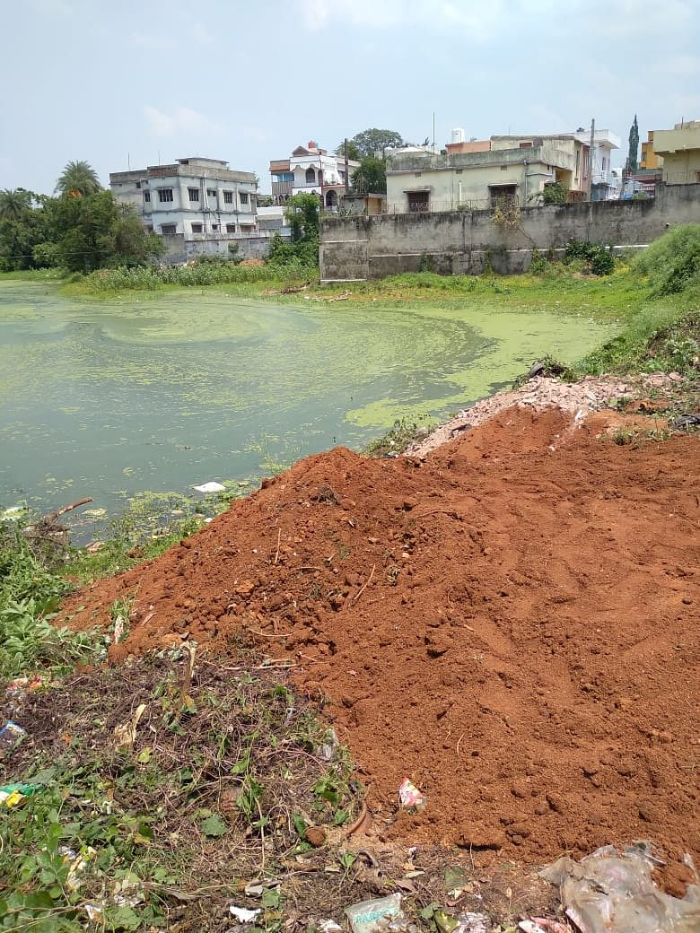 social-worker-pleaded-with-dc-to-save-the-pond