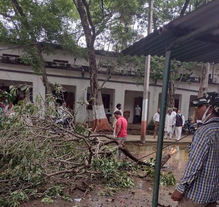 अनुमंडल पदाधिकारी कोर्ट परिसर में पेड़ की टहनी गिरने से भगदड़