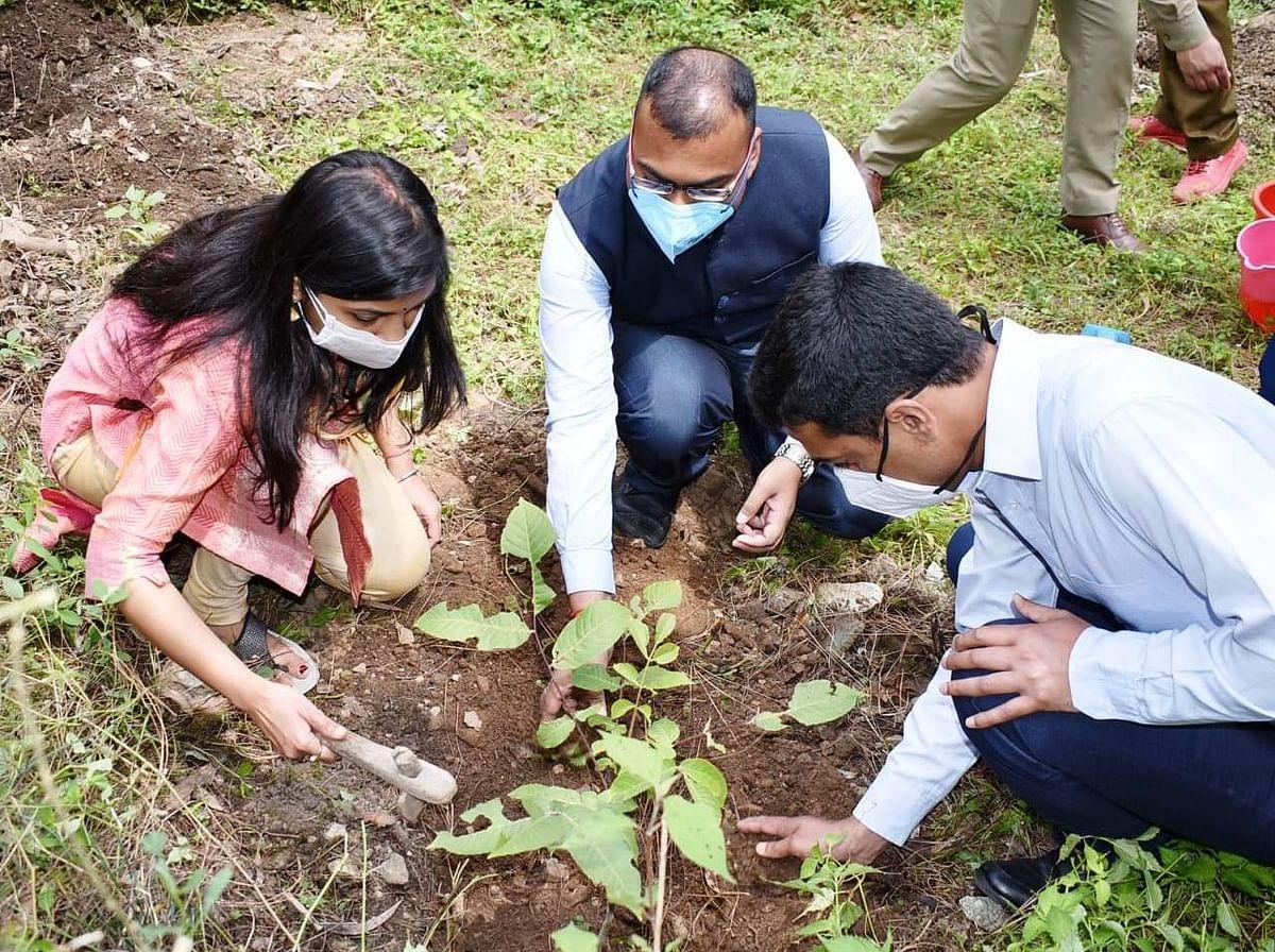 विश्व पर्यावरण दिवस पर चमोली में हुआ पौधरोपण