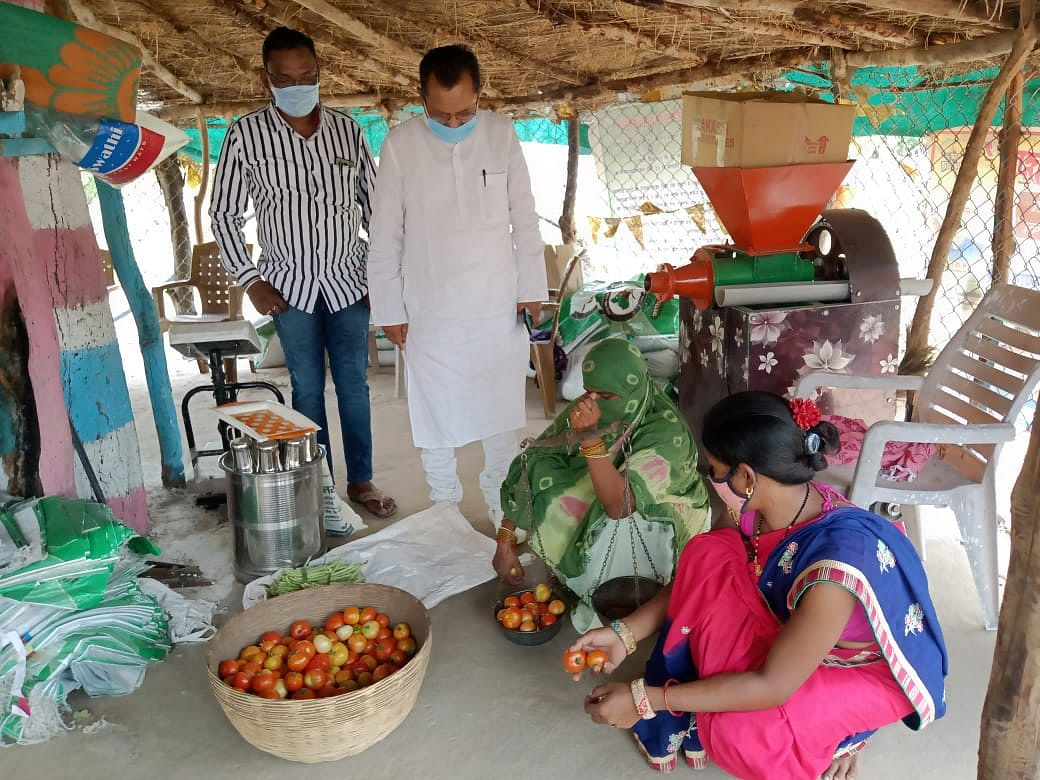 kanker-women-are-becoming-self-sufficient-from-vegetable-and-vermi-compost-production